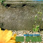 Odd Spring