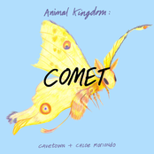 Cavetown: Animal Kingdom: Comet