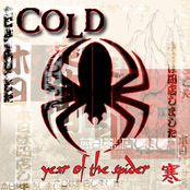 Thumbnail for Year Of The Spider