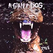 A Giant Dog: Pile