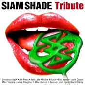 John Corabi: SIAM SHADE Tribute