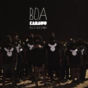 BOA - Single