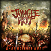 Jungle Rot: What Horrors Await