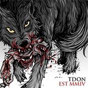 Everette: TDON 5 Year Compilation