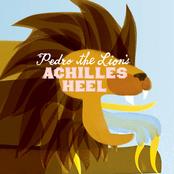 Pedro The Lion: Achilles Heel