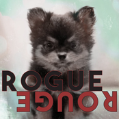 Amber Liu: Rogue Rouge