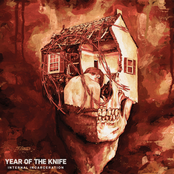 Year of The Knife: Internal Incarceration