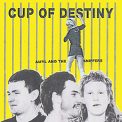 Amyl and The Sniffers: Cup Of Destiny