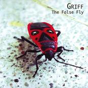 The False Fly