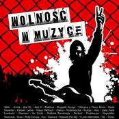 Wolność w muzyce