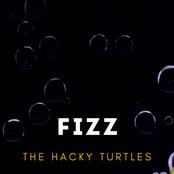 The Hacky Turtles: Fizz