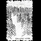 Forgotten Woods [Demo]