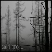 cold grey... - compilation from domovoy7676