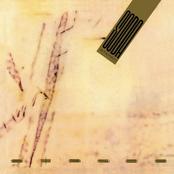 Soda Stereo: Signos