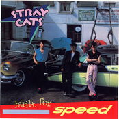 Stray Cats: Built For Speed