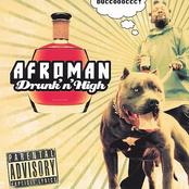 Drunk 'N' High