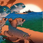 Latające Ryby