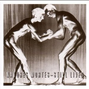 Natures Mortes - Still Lives