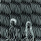 Zebra EP