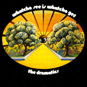 The Dramatics: Whatcha See Is Whatcha Get [Stax Remasters]