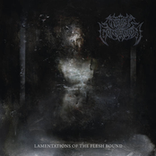 Victims Of Contagion: Lamentations of the Flesh Bound