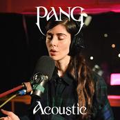Pang (Acoustic)