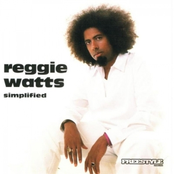 Reggie Watts: Simplified
