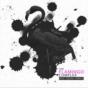 The Flamingo Complex