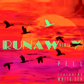 Runaway (feat. White Sea) [Remix]