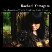 Elephants...Teeth Sinking Into Heart