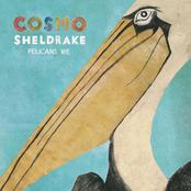 Cosmo Sheldrake: Rich (RadioEdit)