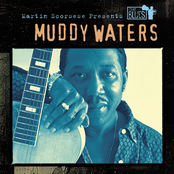 Martin Scorsese Presents The Blues: Muddy Waters