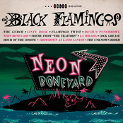 Black Flamingos: Neon Boneyard