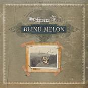 Blind Melon: Best Of Blind Melon
