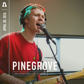 Pinegrove: Pinegrove on Audiotree Live