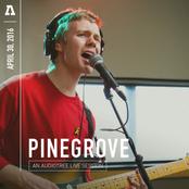 Pinegrove: Pinegrove on Audiotree Live