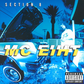 Section 8 (Explicit)