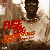 Dangerous Love (feat. Sean Paul) - Single