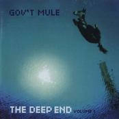 Gov't Mule: The Deep End: Volume 1