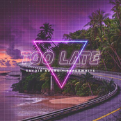 Too Late (feat. Paperwhite)