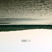 Cabinet: LEAP