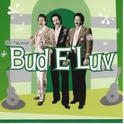 Bud E. Luv: Diary of a Loungeman