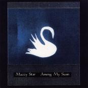 Among My Swan (1996)