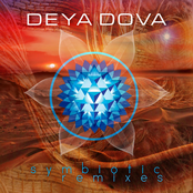 Symbiotic Remixes