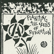 Planting the Seeds of Revolution