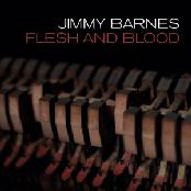 Flesh And Blood (Radio Edit)