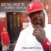 Donkey Sean Jr.