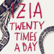 Twenty Times A Day