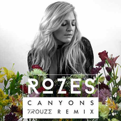 Canyons (Trouze Remix)