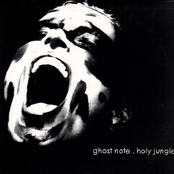 Ghost Note: Holy Jungle